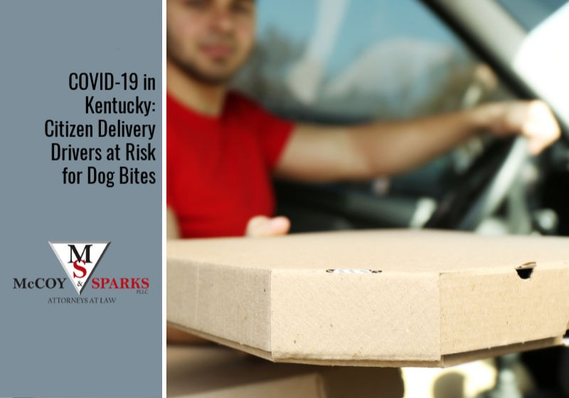 COVID-19 in Kentucky: Citizen Delivery Drivers at Risk for Dog Bites