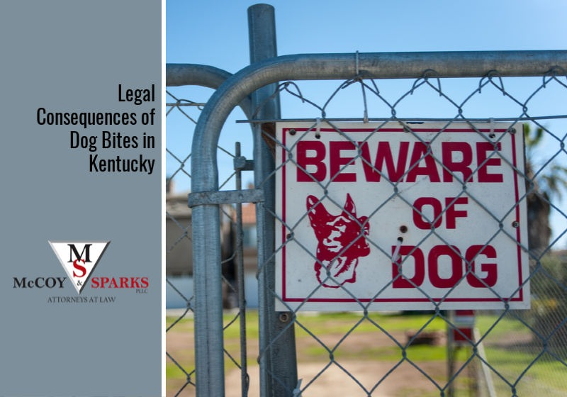 Legal Consequences of Dog Bites in Kentucky
